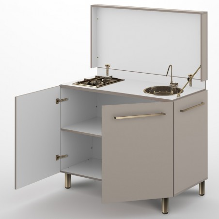 AERY 1200 + 2 gas stove + sink